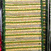 "Semi Sheer Metallic Green and Gold Stripes Wired Craft Ribbon 2"" x 40 Yards - 31385361"