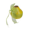 """4"""" Decorative Pear Fruit With Sheer Green Ribbon Figure #29143 - 5243561"""