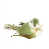 "8.25"" Green, White and Brown Decorative Spring Bird Table Top Figure - 31812475"