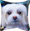 """18"""" Paws And Whiskers Little Lord Malty Maltese Printed Square Indoor/ Outdoor Decorative Pillow - 31366956"""