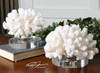 Set of 2 Tropical Ocean Hard Creamy White Coral Sculptures with Crystal Bases - 31346086