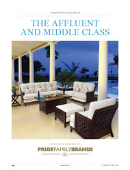 The Affluent and Middle Class Report, 2013