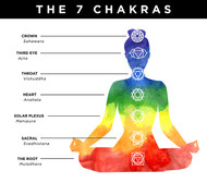 7 Chakras in a Human body