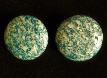 TURQUOISE FOSSIL STONE EARRING