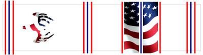 Amercian Flag w/ European Mount Deer Skull