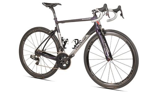 Van Dessel Motivus Maximus Disc Campagnolo EPS V3 equipped Carbon Bicycle, Silver / Black / Purple - Build It Your Way