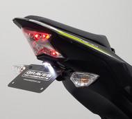 Kawasaki Z900 Fender Eliminator