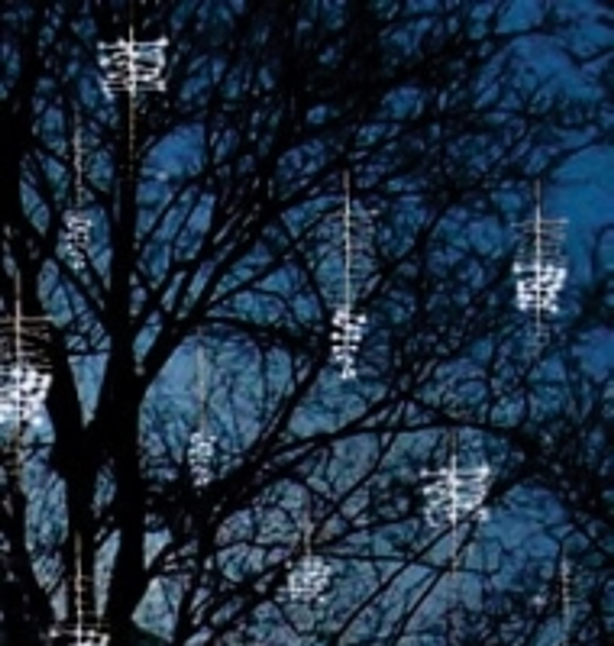 holiday animals led snowfall lights - Snowfall Christmas Lights