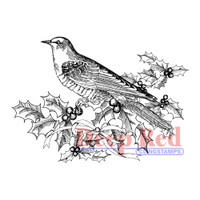 "Deep Red Cling Stamps -  Bird & Holly 3"" x 2"""