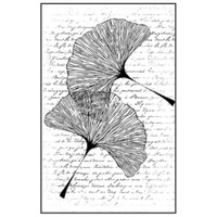 Stamperia High Definition Rubber Stamp - Range of Leaves