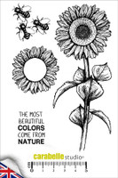 Carabelle A6 Stamps - Sunflower