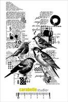 Carabelle A6 Stamps - Collage Avec Des Oiseaux