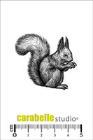 Carabelle Mini Stamps - Squirrel
