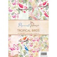 Wild Rose Studio, Papercraft House - Tropical Birds
