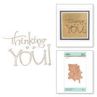 Spellbinders Glimmer Hot Foil Plates by Paul Antonio - Faux Script Thinking of You
