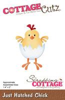 CottageCutz Dies - Just Hatched Chick