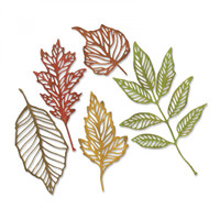 Sizzix Thinlits Die Set 5 PK by Tim Holtz - Skeleton Leaves