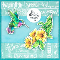 Stampendous Cling Stamps and Dies Bundle - Hummingbird Vine