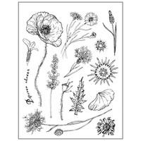 Stamperia High Definition Rubber Stamp - Herbarium