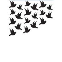 Darice A2 Embossing Folder - Birds