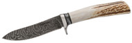 Storm Front Damascus Stag Semi Skinner