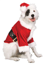 Santa Claus Christmas Pet Costume