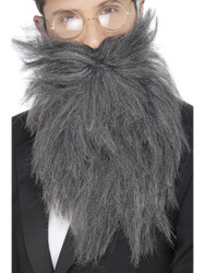 Grey Long Beard and Tash Costume Accessory