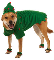 Elf Pet Dog Christmas Costume