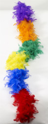 Rainbow Feather Boa Child
