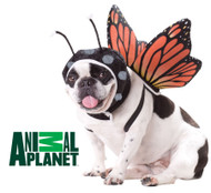 Butterfly Pet Dog Costume