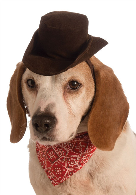 pet dog cowboy hat and scarf halloween costume