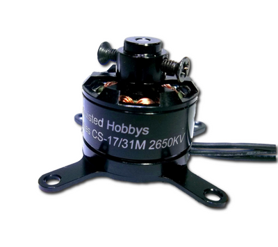 "Outrunner CS-17/31M 2650KV 12g ""Crack Series""  Mini"