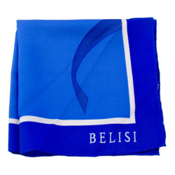 Compelling Cobalt Silk Pocket Square or Handkerchief by Belisi