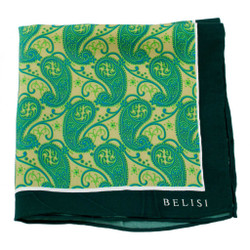 Emerald Excellence Silk Pocket Square or Handkerchief by Belisi