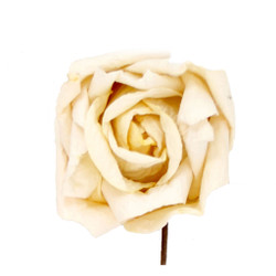 Short Stem Rose in Ivory Set of 6 Roses