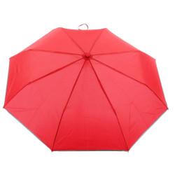 Delightful Drizzle Foldup Umbrella