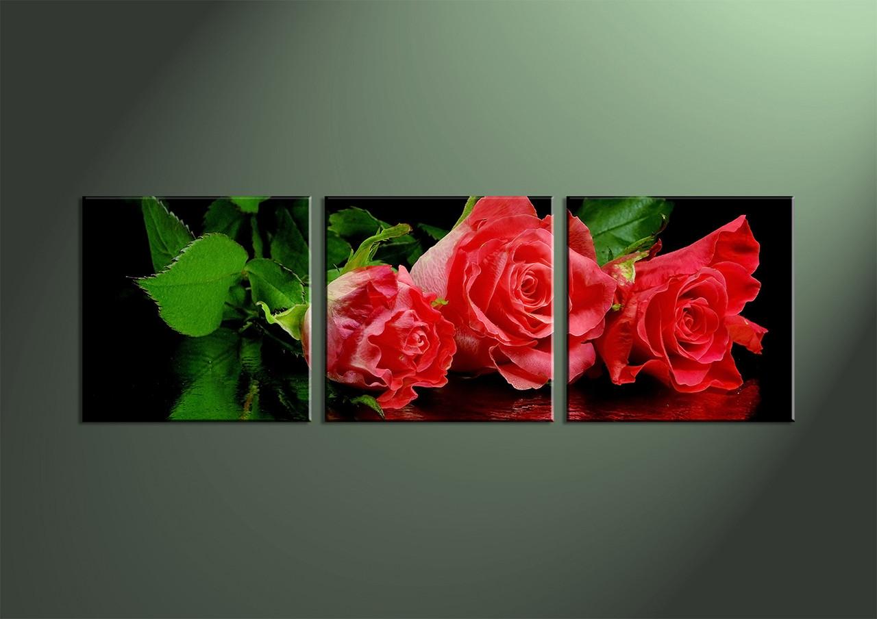 3 piece canvas red flower photo canvas. Black Bedroom Furniture Sets. Home Design Ideas
