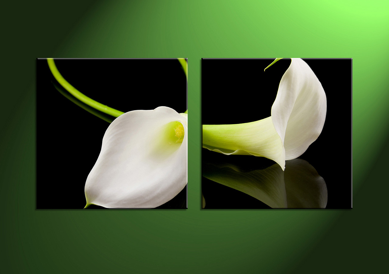 2 Piece Canvas White Flowers Pictures