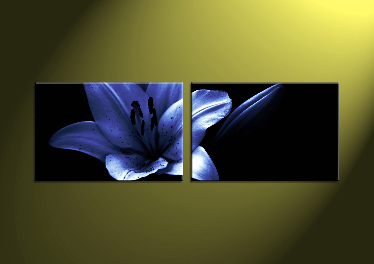 2 Piece Canvas wall Artblack and white printartworkflower pictures & 2 Piece Blue Flower Canvas Wall Art