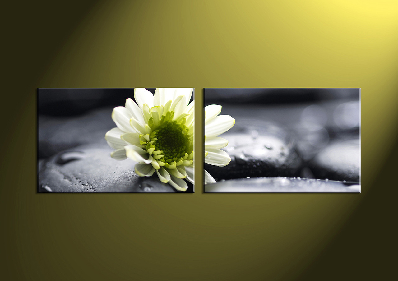 2 piece white flower canvas wall art for Buy canvas prints online