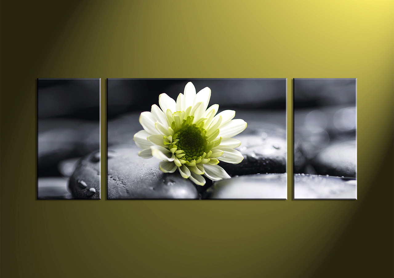 3 Piece White Flower Canvas Photography