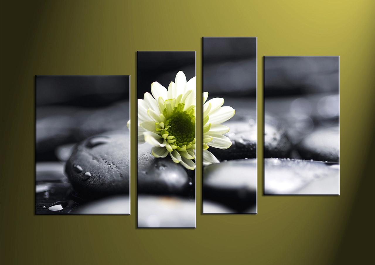 Floral Canvas Wall Art 4 piece white floral canvas art prints