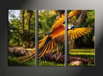 home decor, 3 piece canvas wall art, forest canvas wall art, parrot canvas art, wildlife group canvas