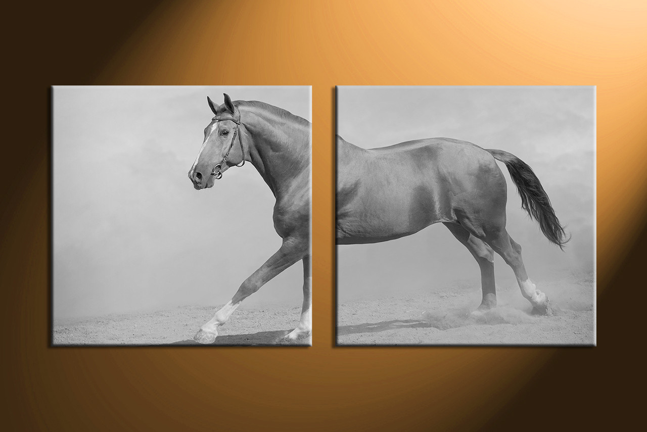 Wall Art Horses 2 piece black and white wildlife horse canvas wall art