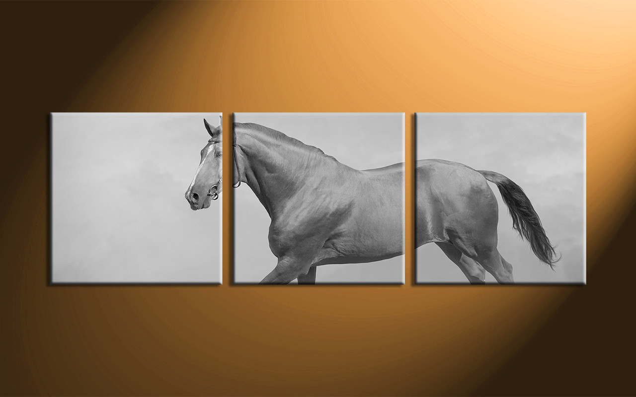 Home Decor 3 Piece Wall Art Horse Multi Panel Black And White