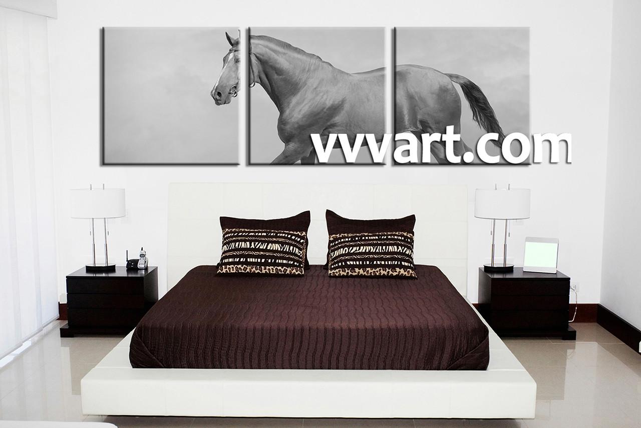 3 Piece Black and White Horse Wildlife Canvas Art Prints