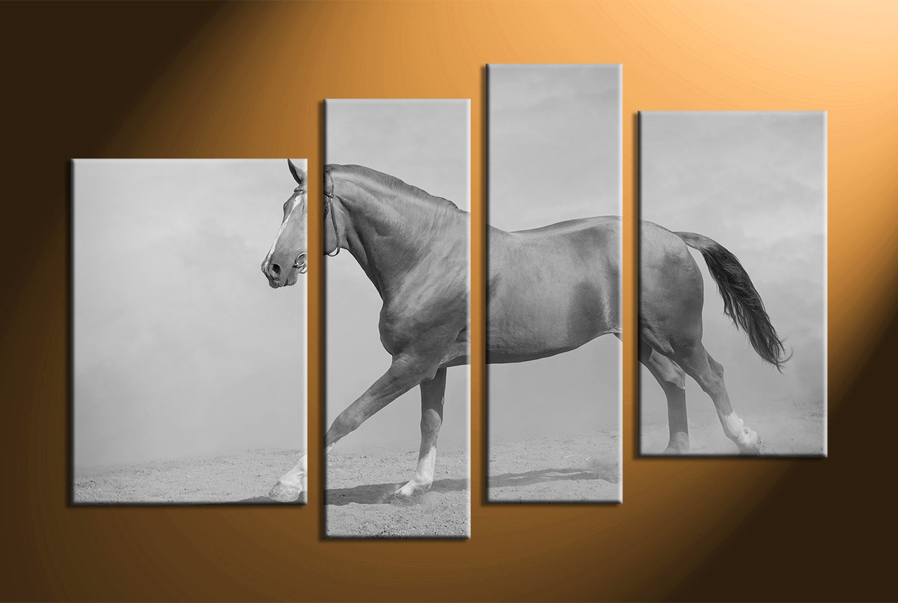 4 piece black and white horse wildlife photo canvas