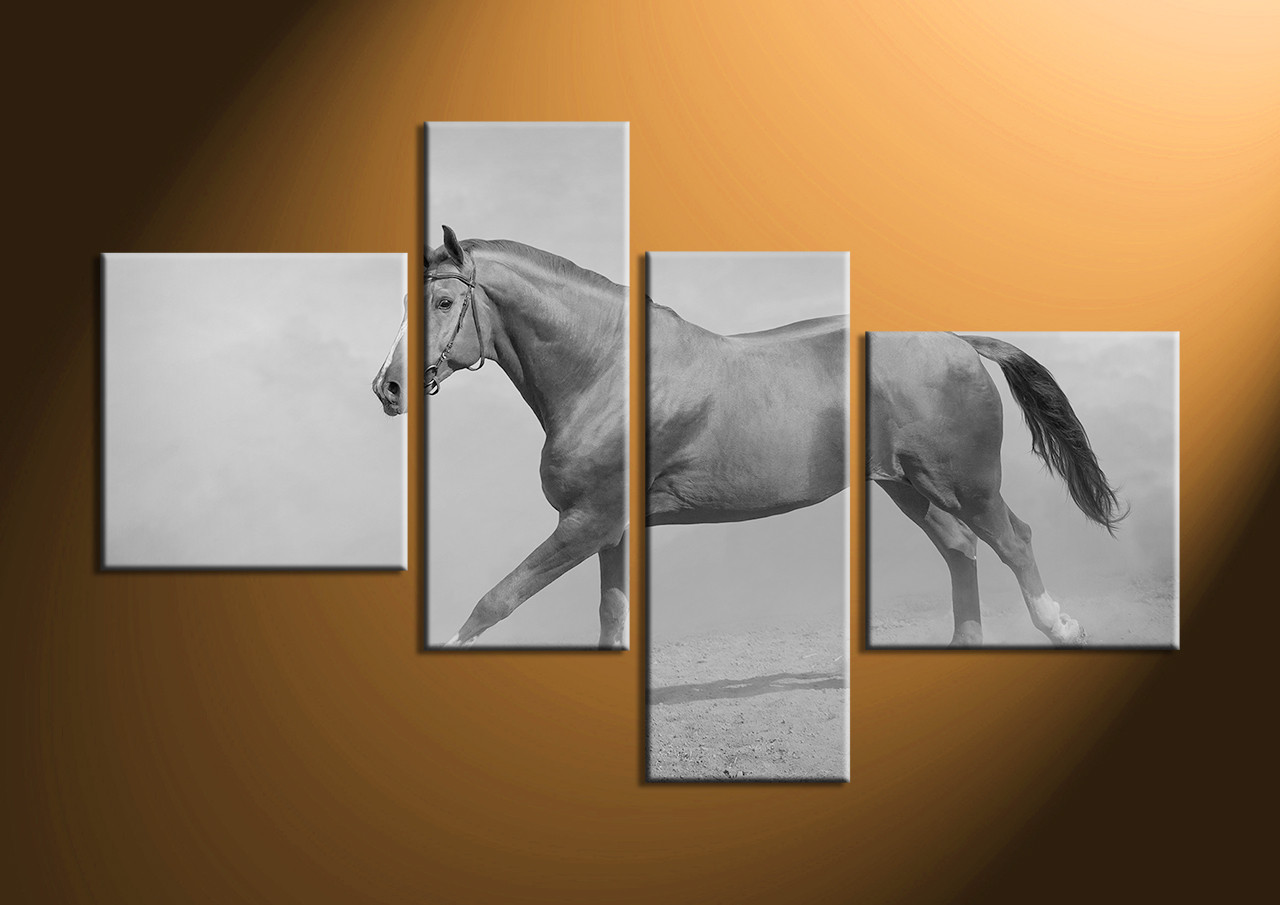 4 piece canvas black and white horse wildlife art for White wall art