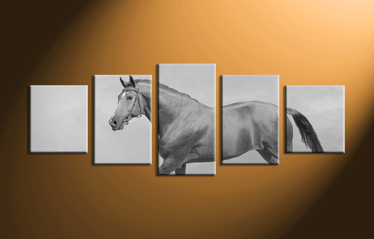5 Piece Canvas Horse Black And White Wall Decor