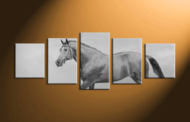 home decor, 5 Piece Wall Art, horse artwork, black and white  canvas art, animal large canvas